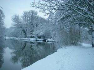 witte-winter2009 010-b